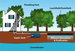 378972-septic-tank-pumping